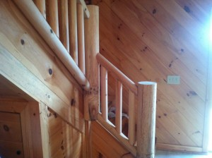 Custom Log Railing